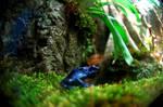 Blue Poison Dart Frog I by LDFranklin