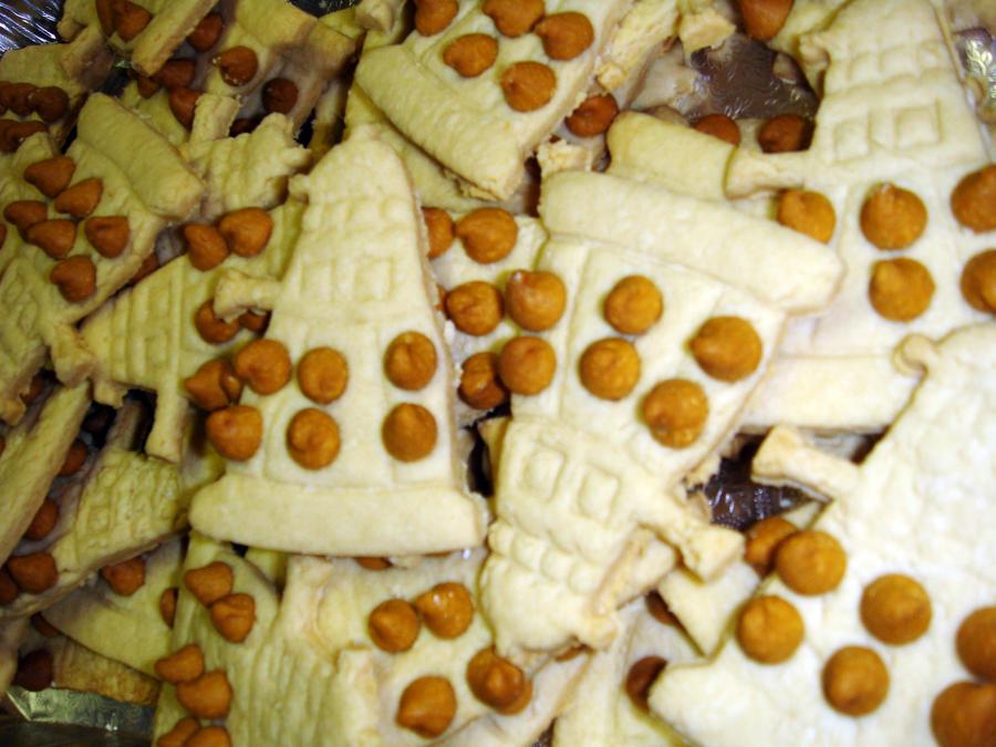 Dalek Cookies by LDFranklin