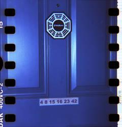 Diana 2 15 Dharma Door by LDFranklin