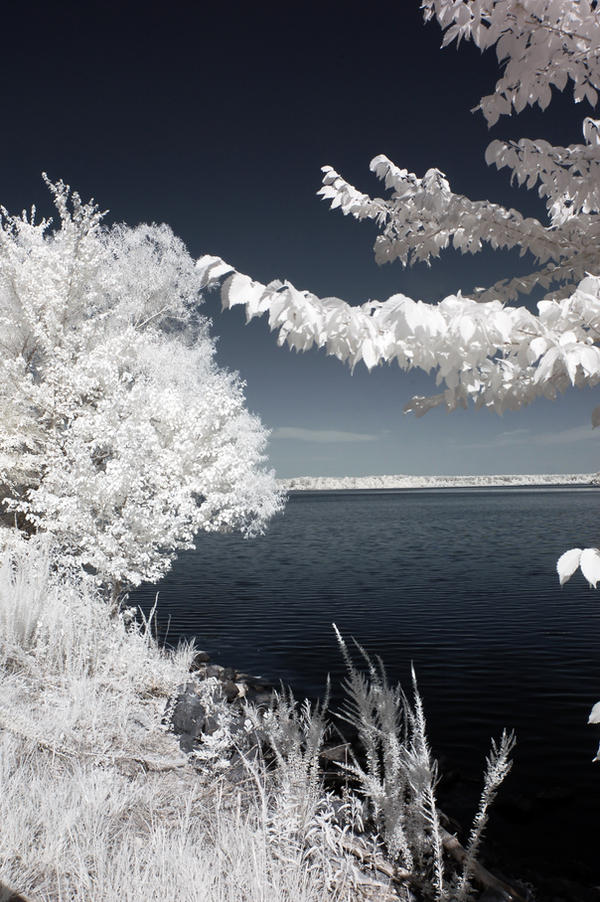 Lovely Lake Crabtree IR XI by LDFranklin