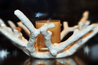 LB White Branch Candle Holder by LDFranklin