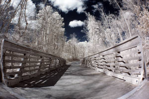 Infrared Fisheye XI by LDFranklin