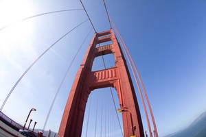 San Francisco Trip CDXXXVIII by LDFranklin