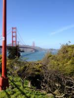 San Francisco Trip CDLXXVI by LDFranklin
