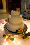 CJ Wedding XIX by LDFranklin