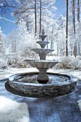 WRAL Garden IR VII by LDFranklin