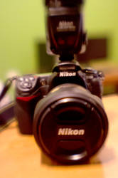 Nikon D300 Plastic by LDFranklin