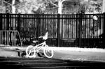 Lonely Bike by LDFranklin