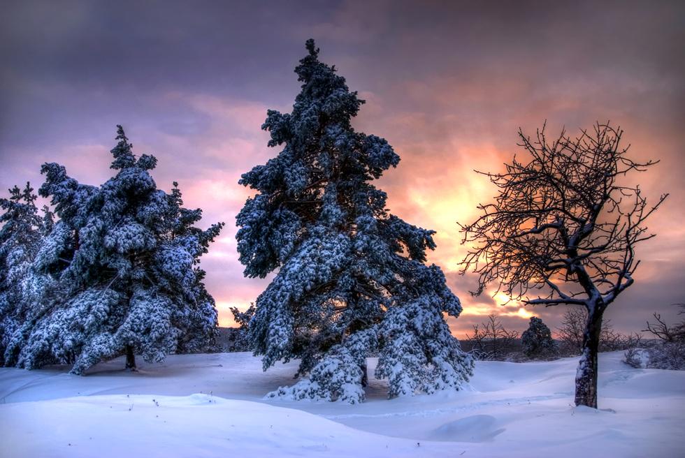 winters tale II by stg123