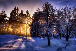 snow lightning by stg123