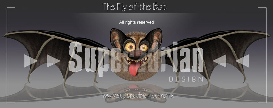 The Fly of the Bat