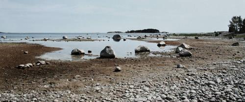 Stony shore