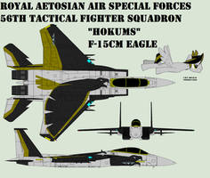 Eagle F-15CM (Revised) by Zhanrae30