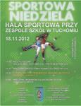 Sportowa niedziela - plakat