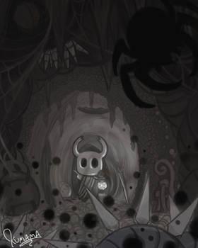 Hollow Knight: A Little Guidance