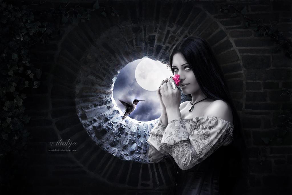 Moonlight Sonata by thalija