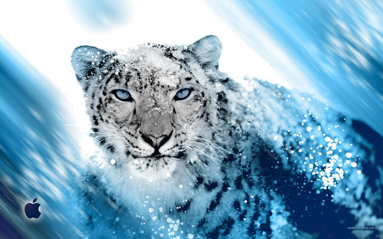 snow leopard anime snow leopard inspired by djog