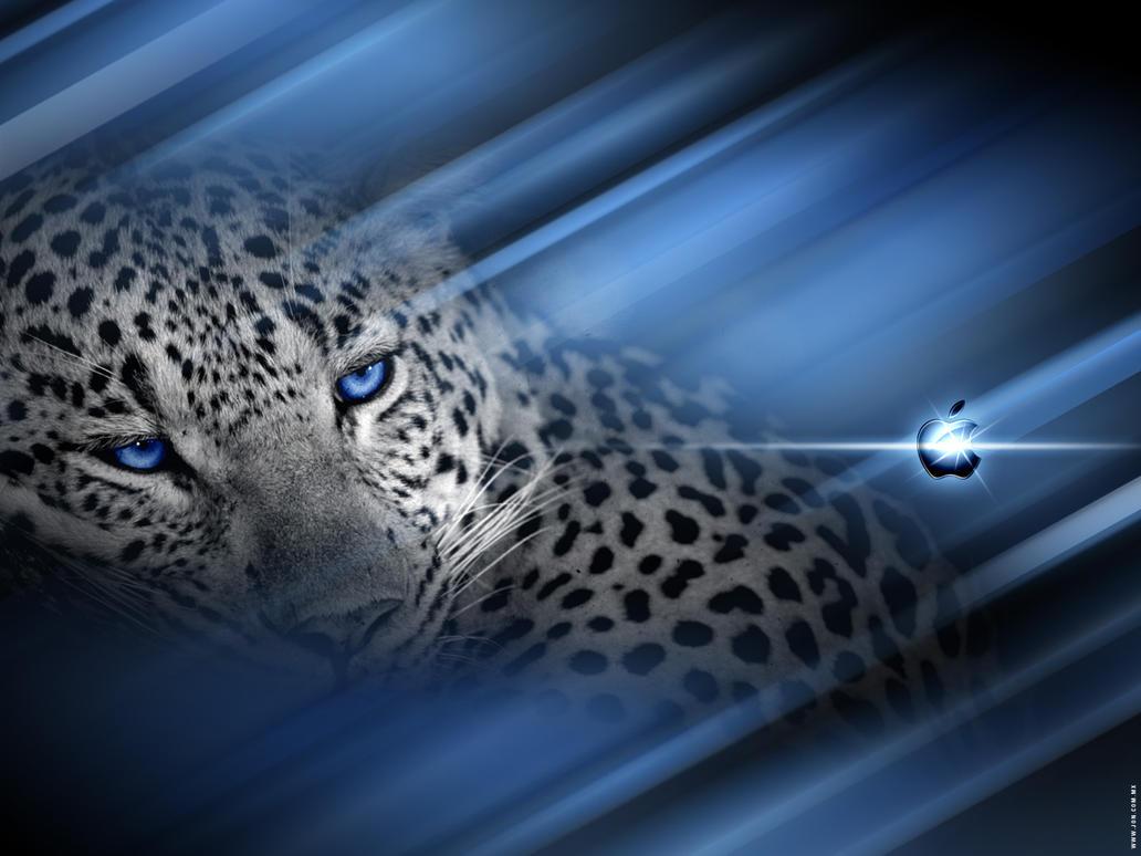 Leopard Inspired v2.0 WP by djog