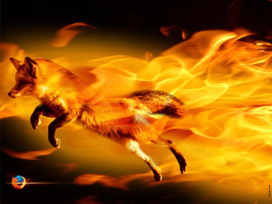 The Firefox by djog