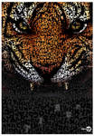 Tiger Typo