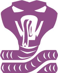 Cobra Fullbottle Icon by CometComics