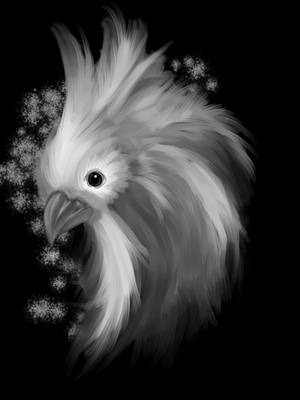 Silky Chicken by JasmineAlexandra