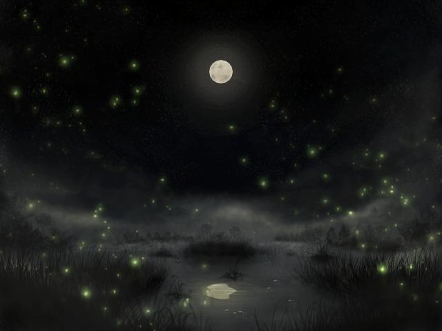 Moonlit Swamp by Firgof