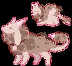 [Species concepts] Unnamed species