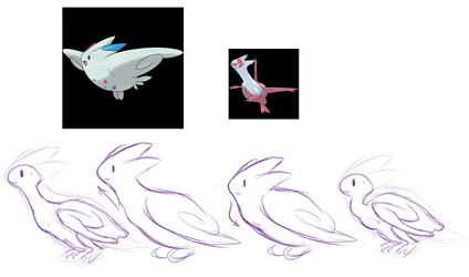 Togekiss anatomy headcanon by Fumi-LEX