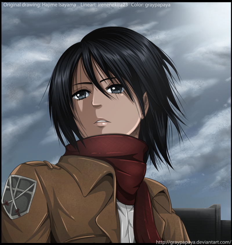 Attack on Titan - Mikasa Ackerman by graypapaya