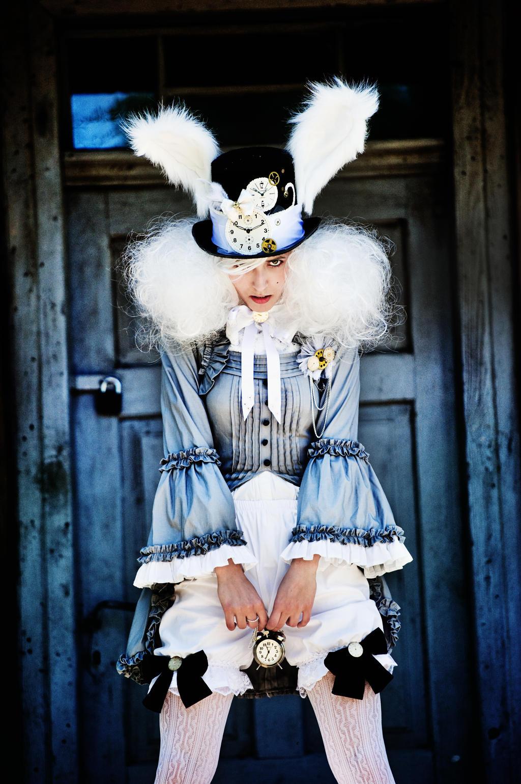White Rabbit by LionsWandcraft White Rabbit by LionsWandcraft & White Rabbit by LionsWandcraft on DeviantArt