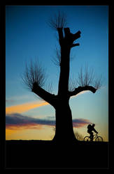 Riding Into The Night