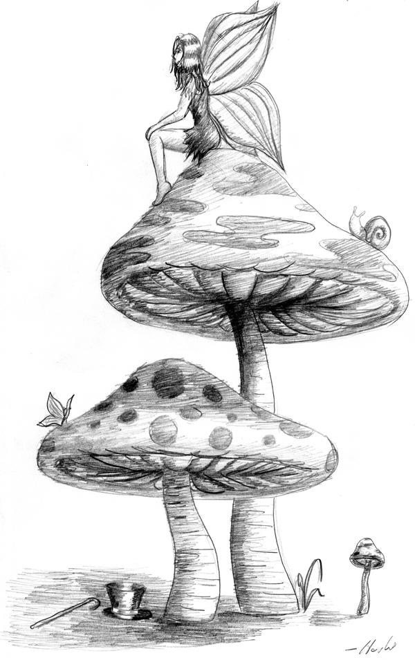 fairy girl and two mushrooms by bigcatpants on deviantart