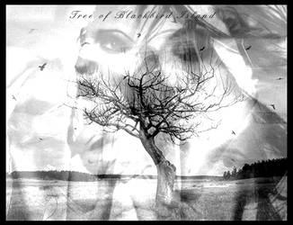 Tree of Blackbird Island by bluetwilight