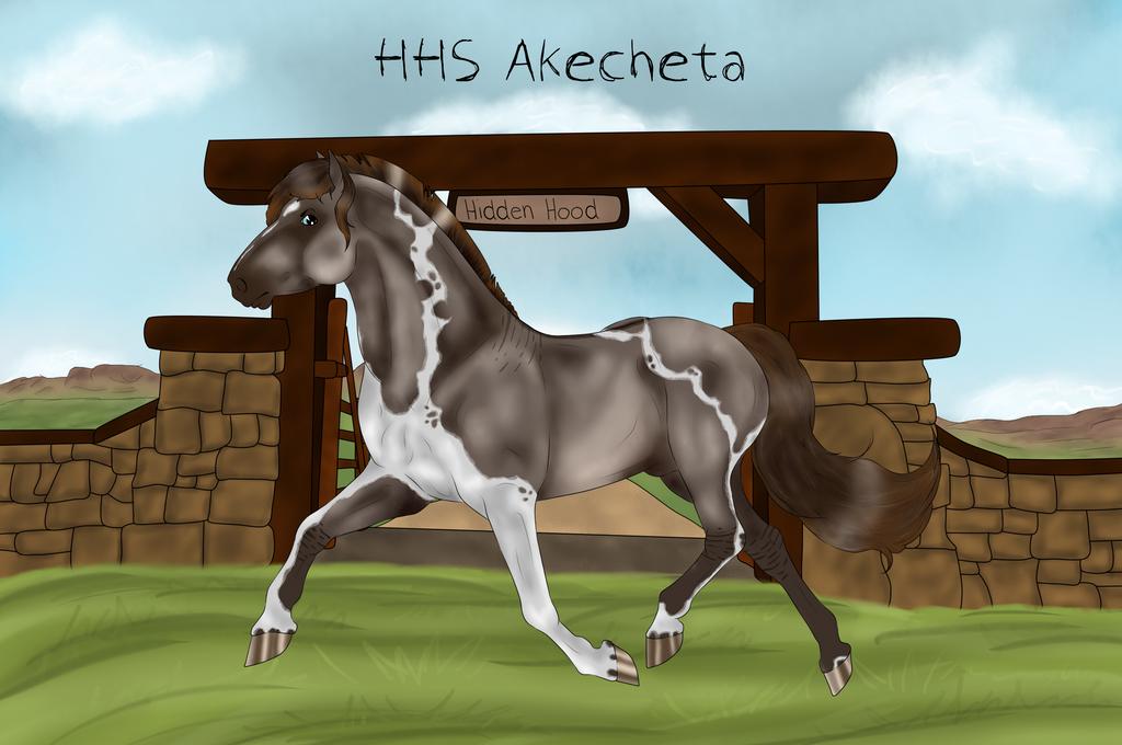 HHS Akecheta #9709 by Floricenti
