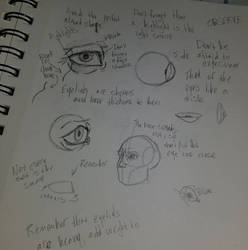 Eye Proportions by TroilusMaximus