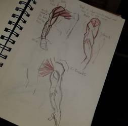 Arm Detail by TroilusMaximus
