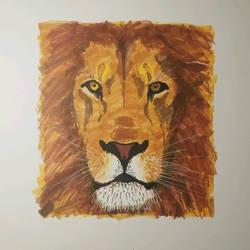 Lion Project by TroilusMaximus