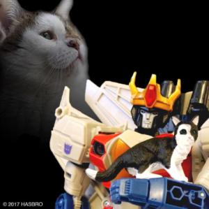 ken-foxx's Profile Picture