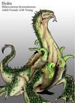 Hydra Remake