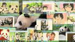 Panda Shimeji