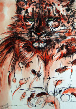 the red Snow Leopard
