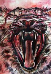 the crimson Snow Leopard