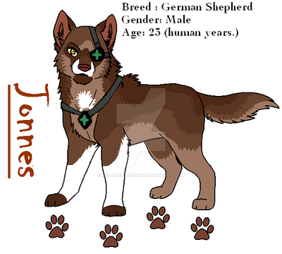 Jonnes - Reference Sheet by MichelsAdoptions