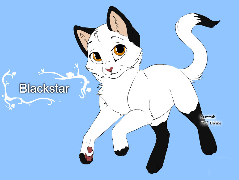 warrior cats character design templates blackstar by