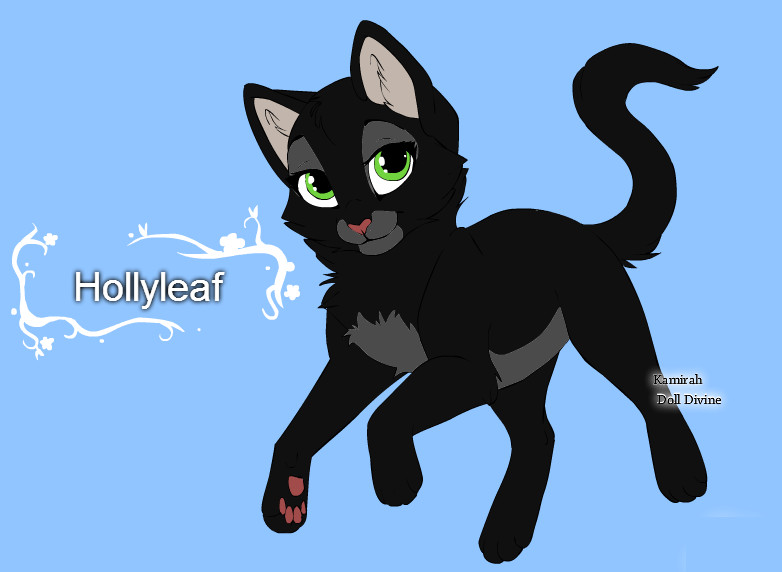Warrior Cats Character Design Templates Hollyleaf By Warriorcatscrazy