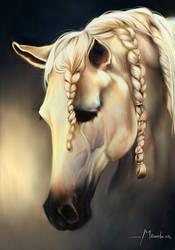 Lusitan Horse