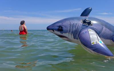 Shark Attack by myraincheck