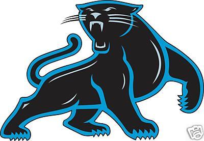 Carolina Panthers by catwoman09