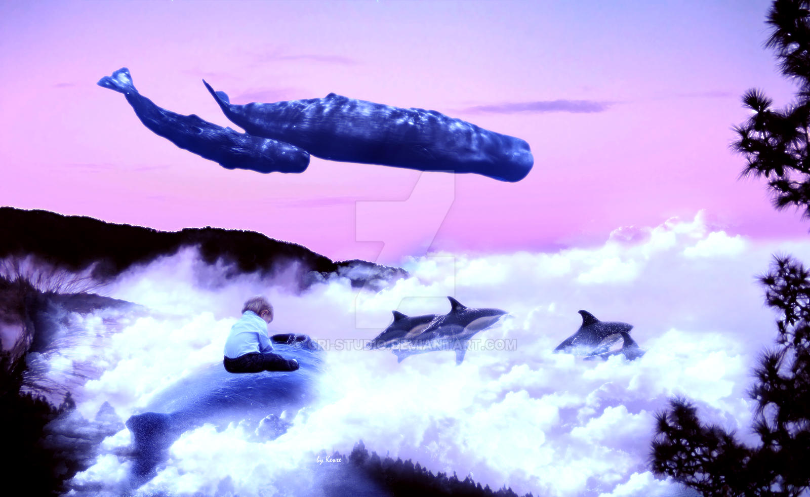 Whale migration by Cri-Studio